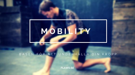 Mobility – Basen för att underhålla din kropp
