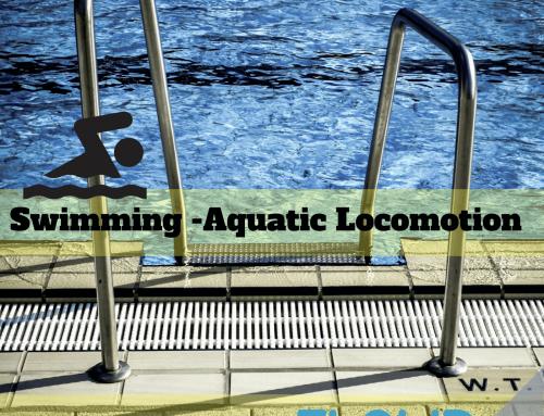 Swimming – Aquatic Locomotion