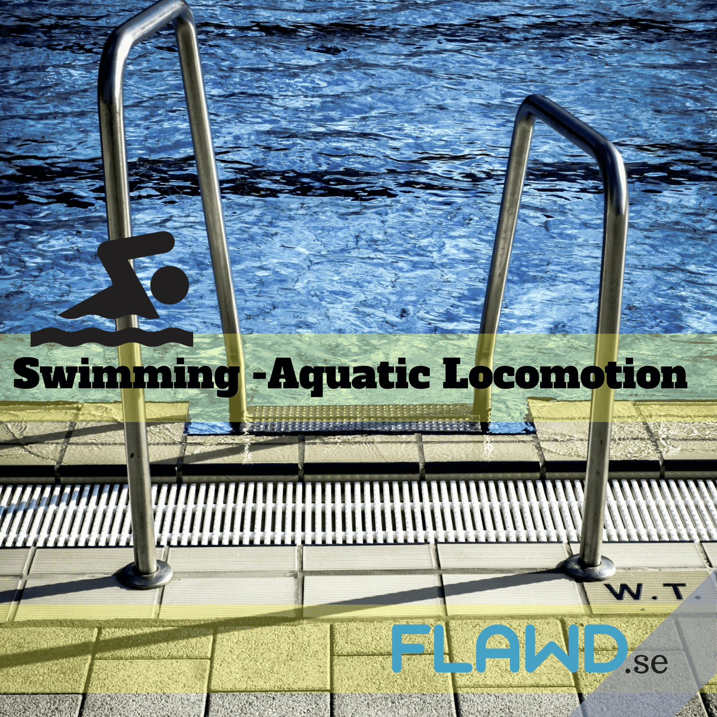 Swimming – Aquatic Locomotion